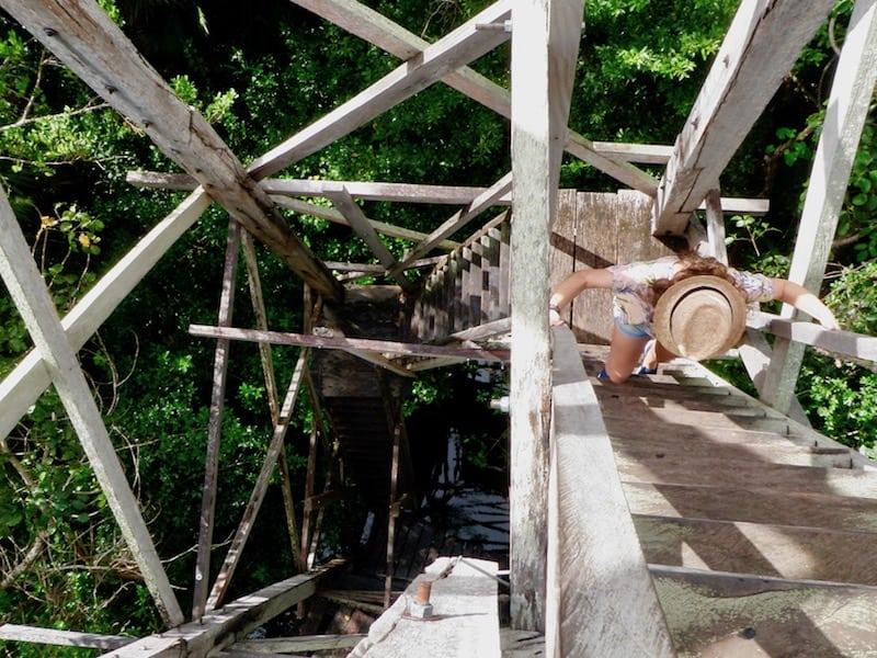 reaching the observation platform inside Sian Ka'an Reserve