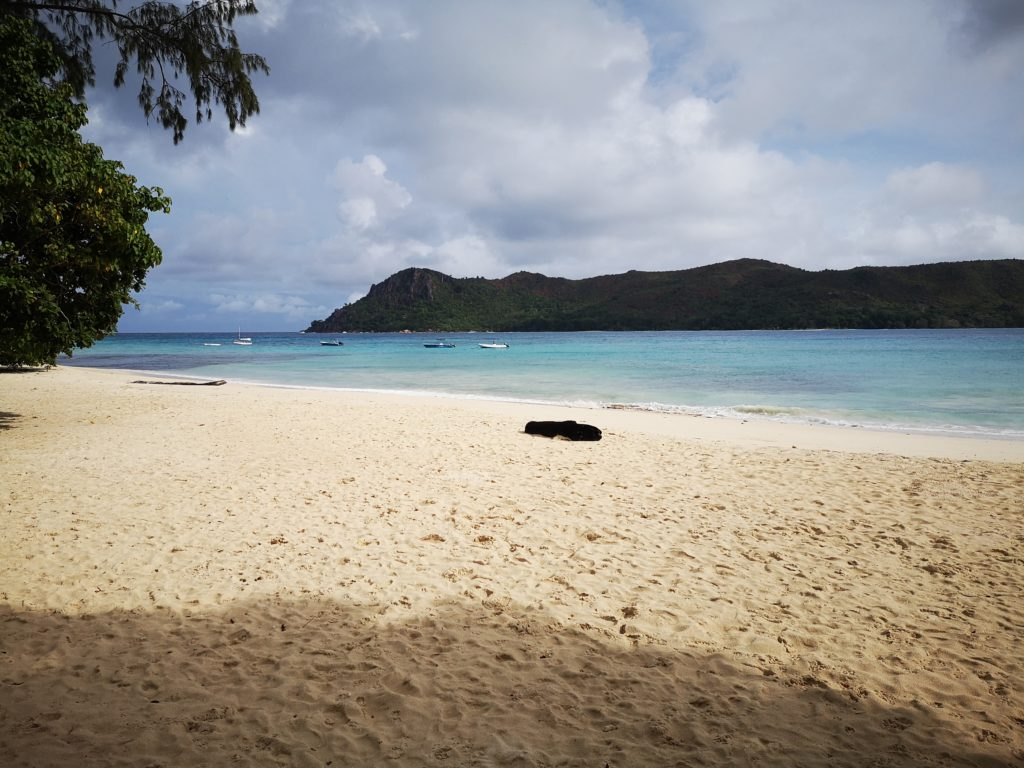 Anse Boudin, A complete guide to Praslin Island in Seychelles.