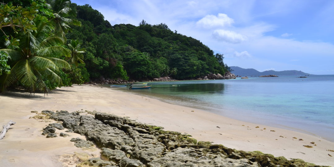 A Complete Guide To PRASLIN Island In Seychelles