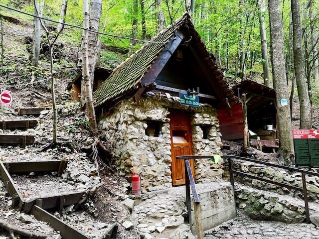 Valea Cetatii Cave Rasnov