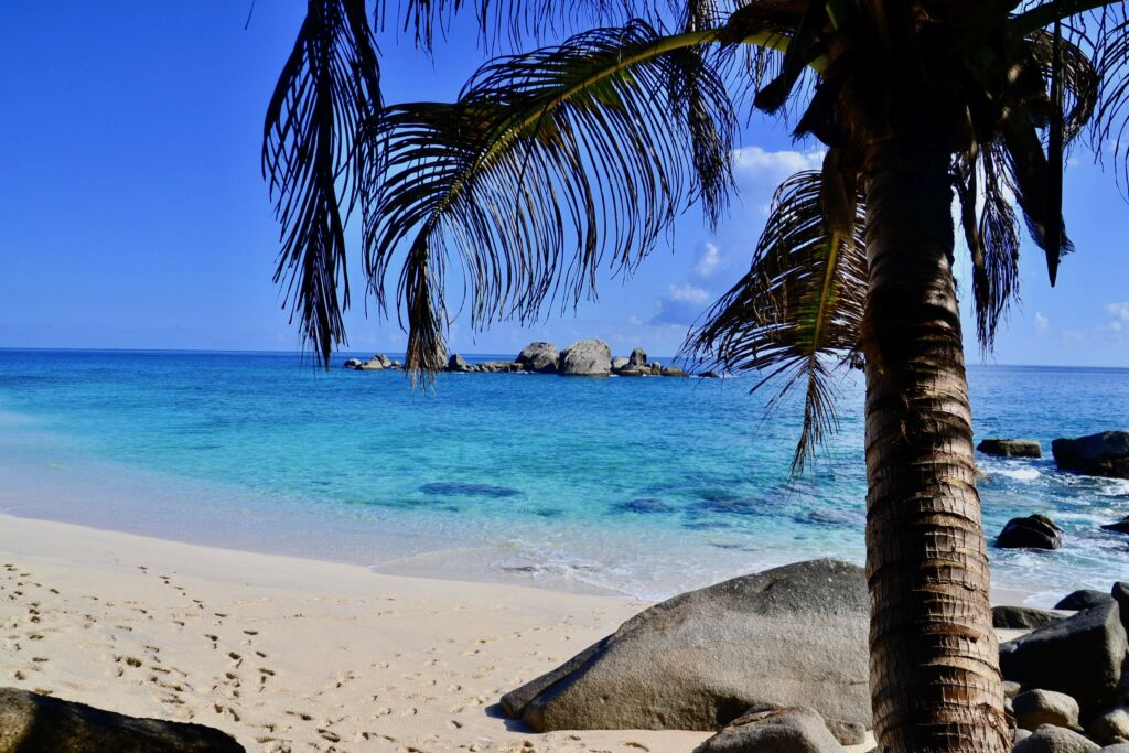 Top Things You Can't Miss In Seychelles