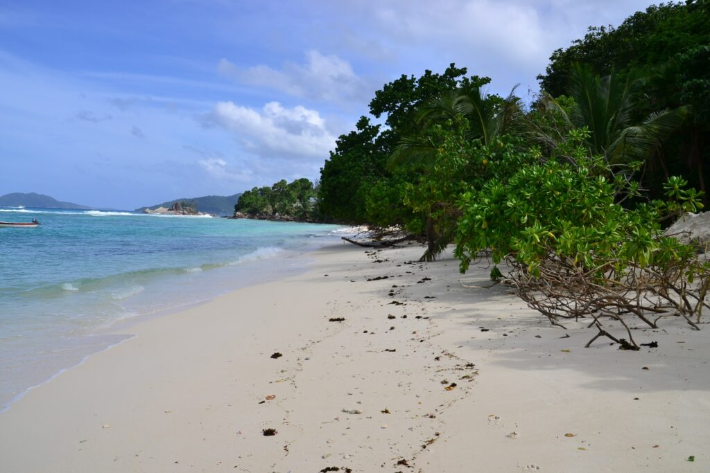 A Complete Guide to Praslin Island