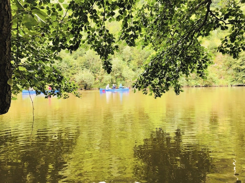 Sitting still under the trees and waiting for the rain to stop while the canoe group was paddling upstream the river.