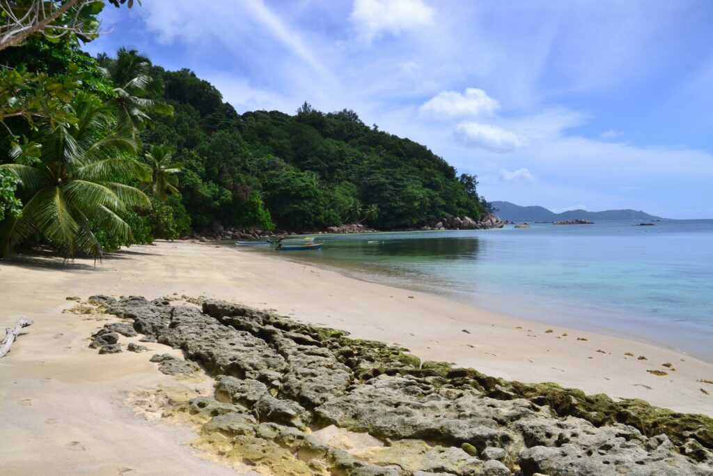 Anse Marie-Louise, A Complete Guide To PRASLIN Island In Seychelles