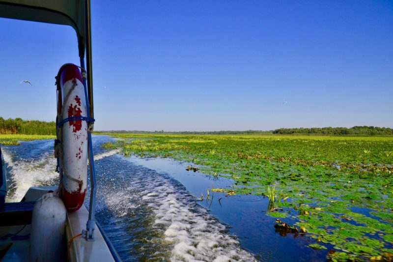 A Complete Guide To The DANUBE DELTA, Romania