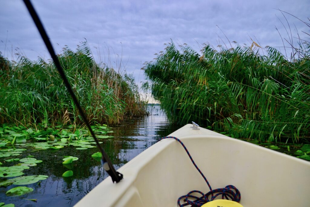 Discovering the Danube Delta by boat from Crisan village.