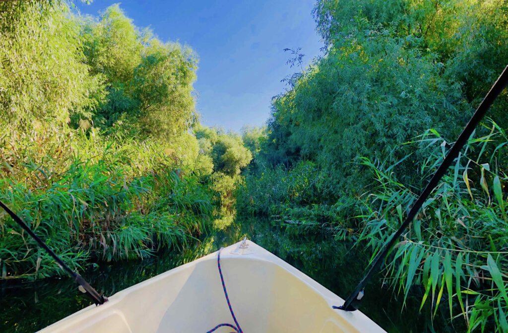 A Complete Guide To The DANUBE DELTA, Romania, Discovering the narrow channels of the Danube Delta.