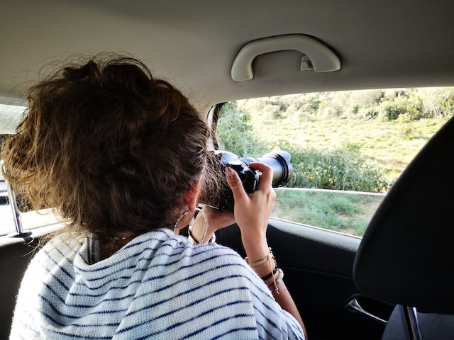 trying to spot the lion on a self-drive safari